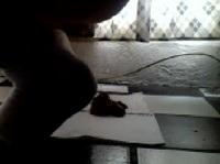 Geil auf den Boden kacken