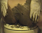 Scat Schlampe scheißt auf Klodeckel